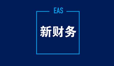 金蝶EAS总账期末调汇培训视频教程