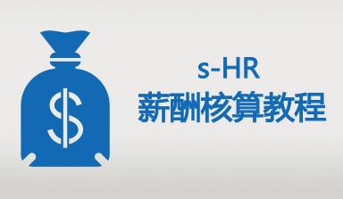 金蝶EAS s-HR薪酬核算2培训视频教程