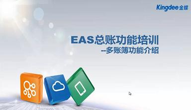 金蝶EAS总账多账簿培训视频教程